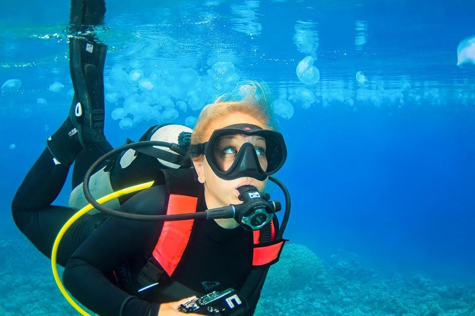 Scuba Diving with Jellyfish in Ras Abu Galum, Sinai, Egypt