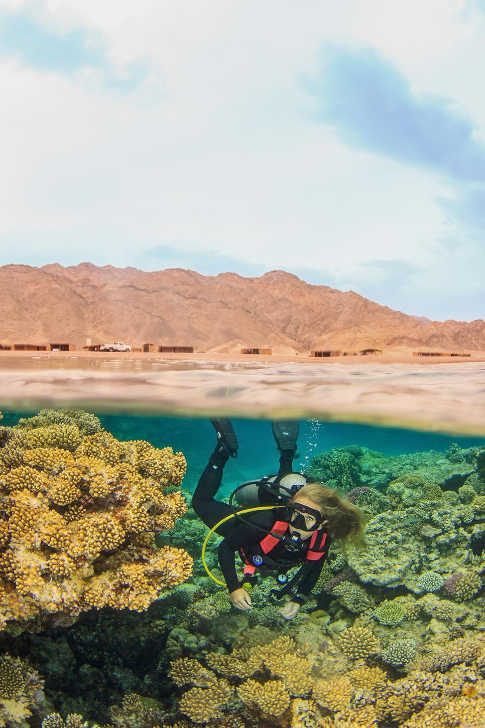 Diving in Ras Abu Galum