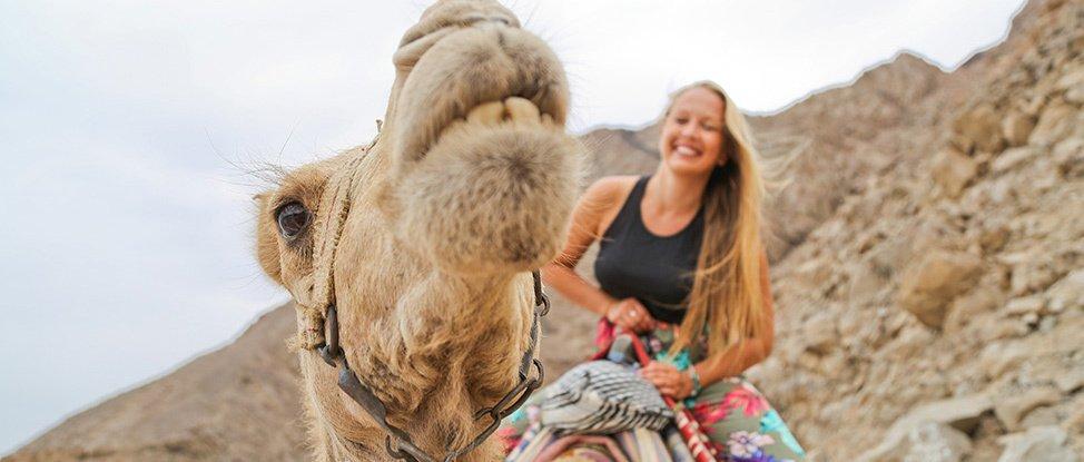My Bedouin Adventure: A Camel Diving Safari in Egypt thumbnail