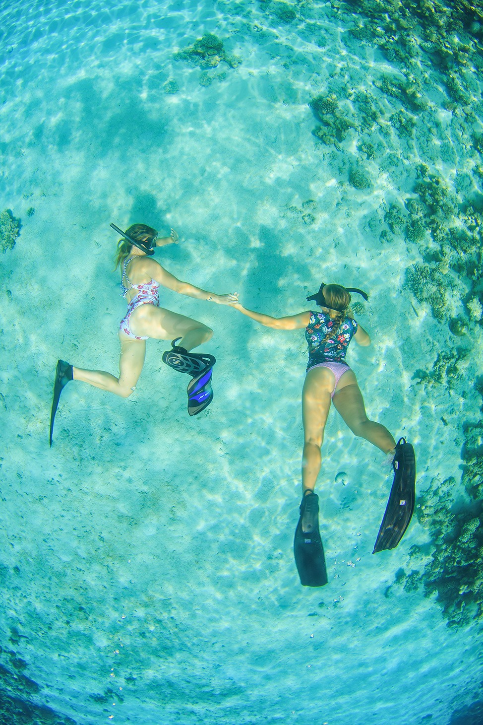 Snorkeling in Ras Abu Galum, Sinai, Egypt