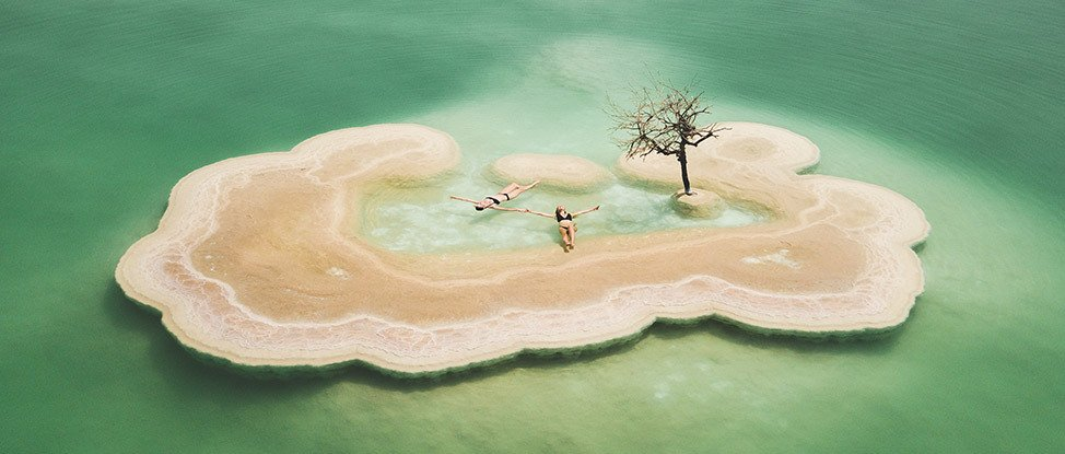 Life In The Lowest Place On Earth: Discovering The Dead Sea Tree thumbnail