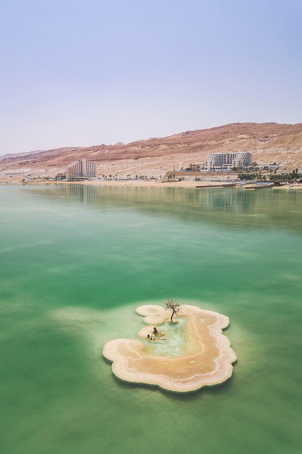 The Dead Sea Tree, Ein Bokek, Israel