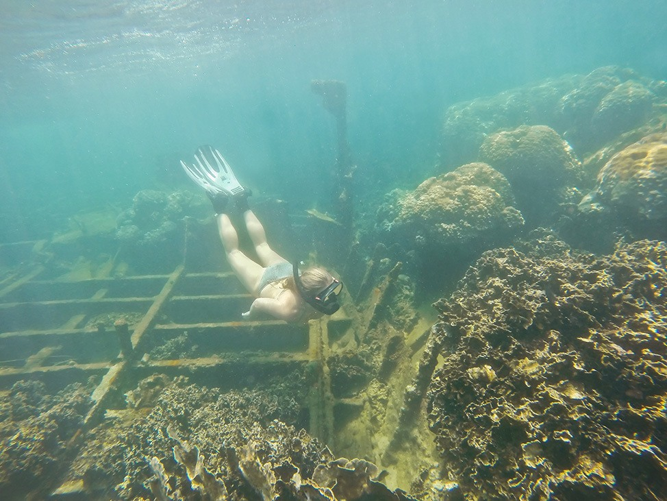 Snorkeling on the shipwreck in Mae Haad, Koh Tao, Thailand
