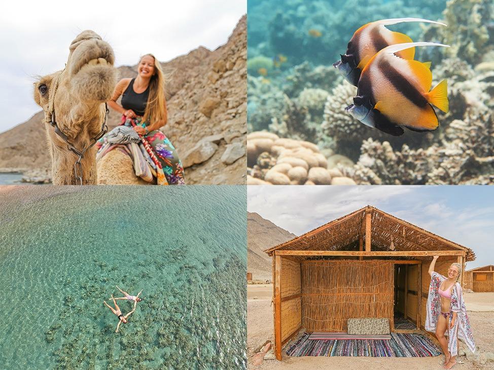 Ras Abu Gallum Travel Blog
