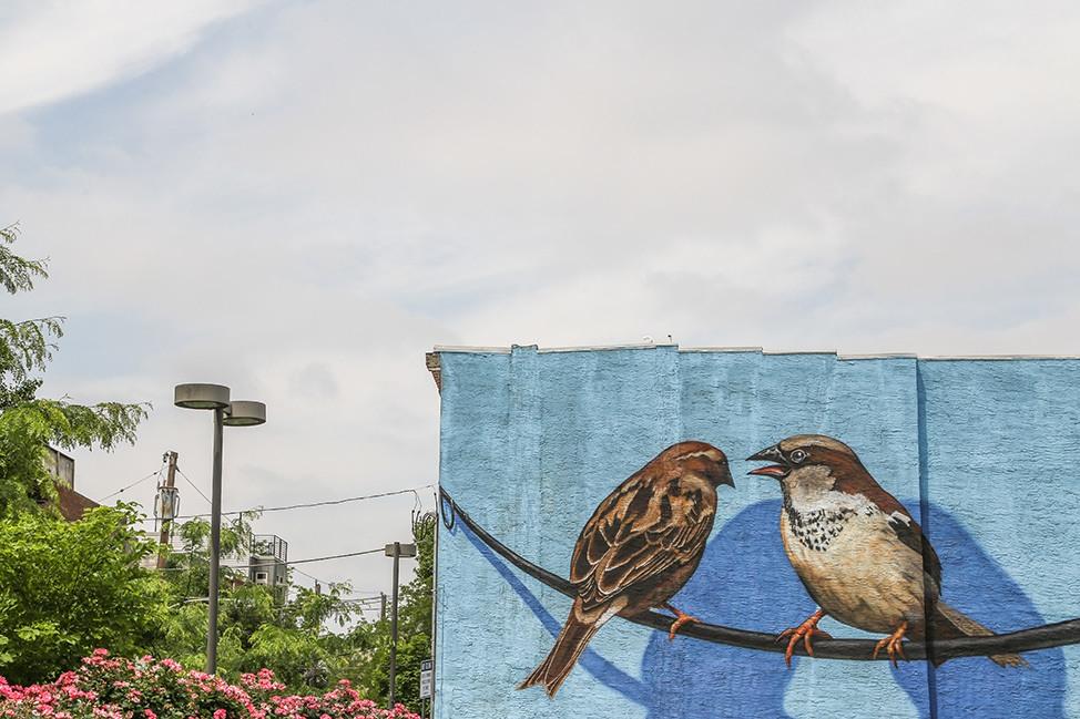 Philadelphia Mural, Queen Village