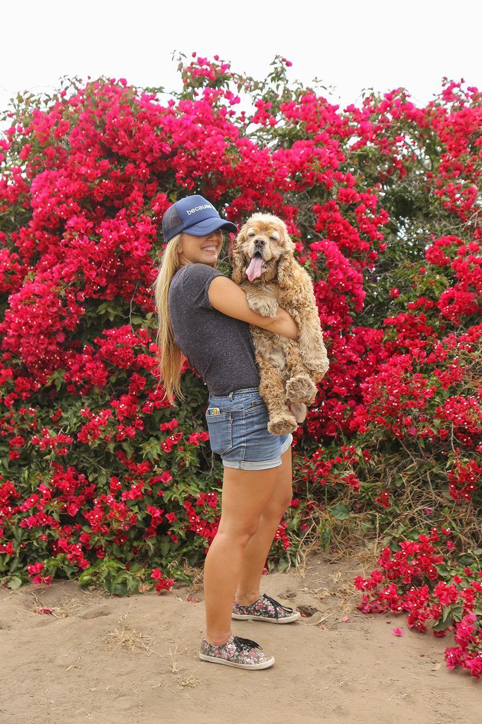 Dog Friendly Santa Barbara Travel Guide