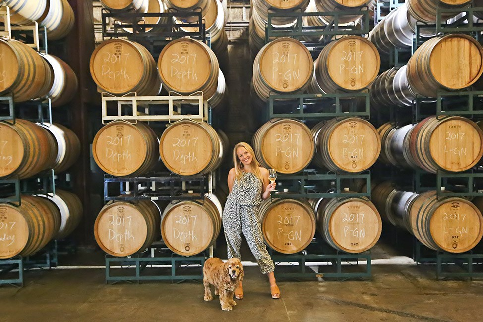 Dog Friendly Carr Winery Santa Barbara