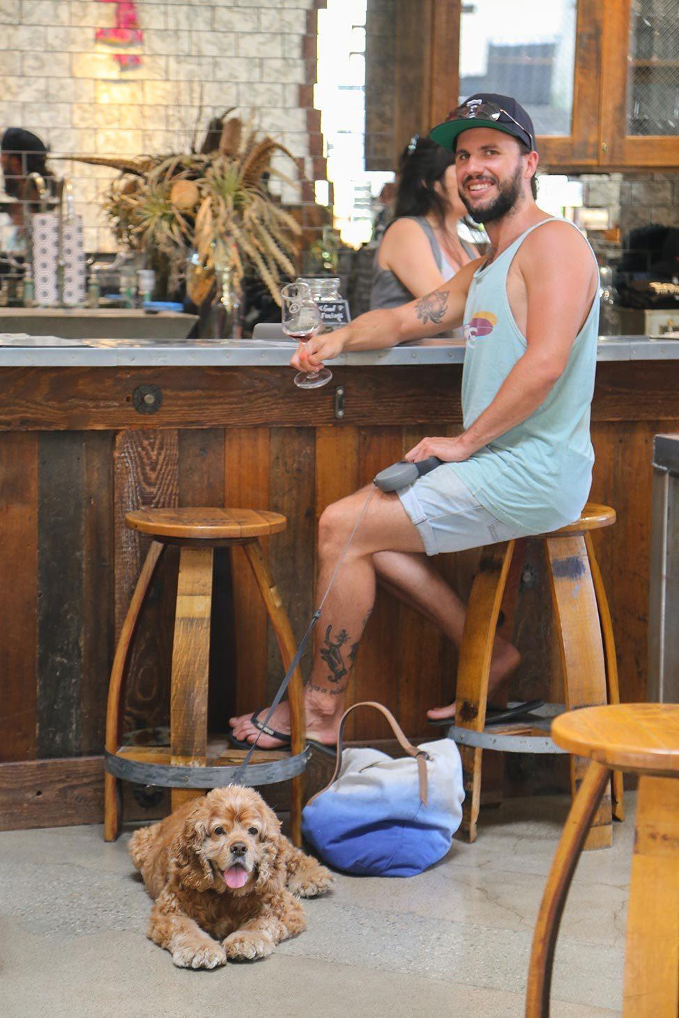 Fox Wine Co. Dog Friendly Winery Santa Barbara