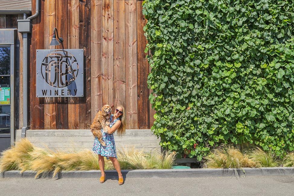 Dog Friendly Potek Winery Santa Barbara