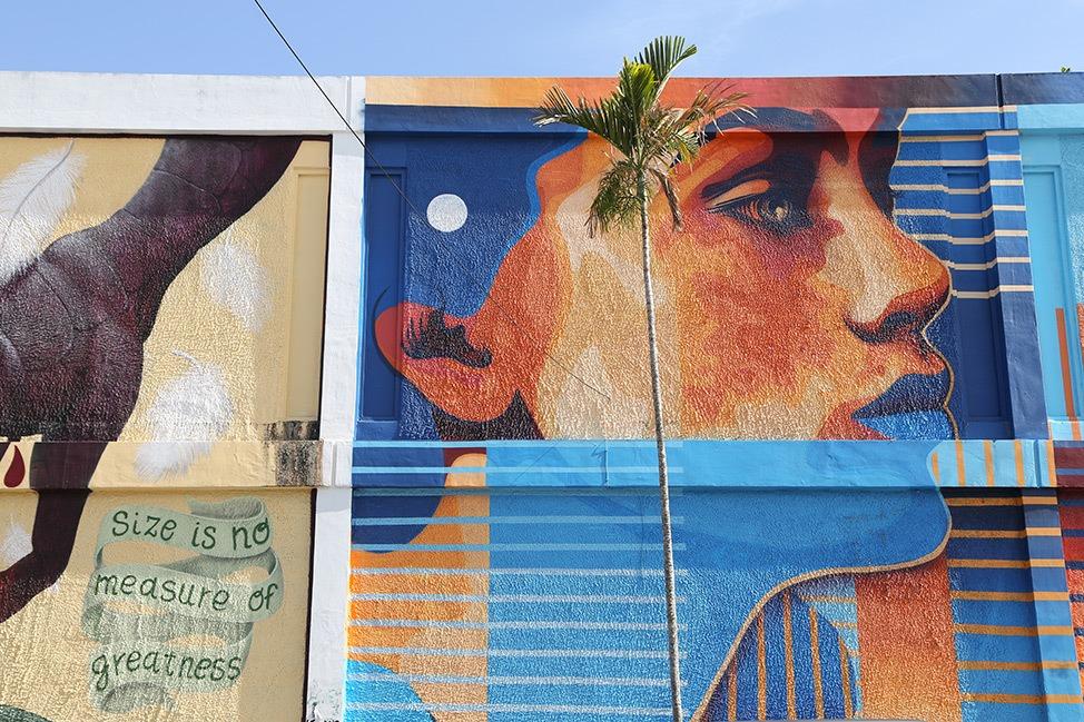 Wynwood Tour Miami