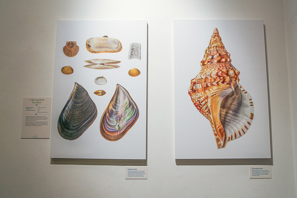 Unseen Oceans at American Museum of Natural History