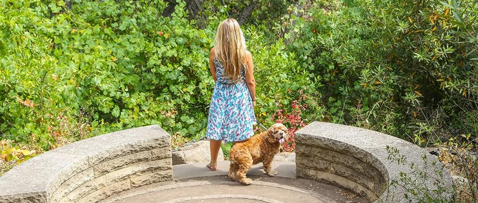 The Ultimate Dog Friendly Santa Barbara Guide thumbnail