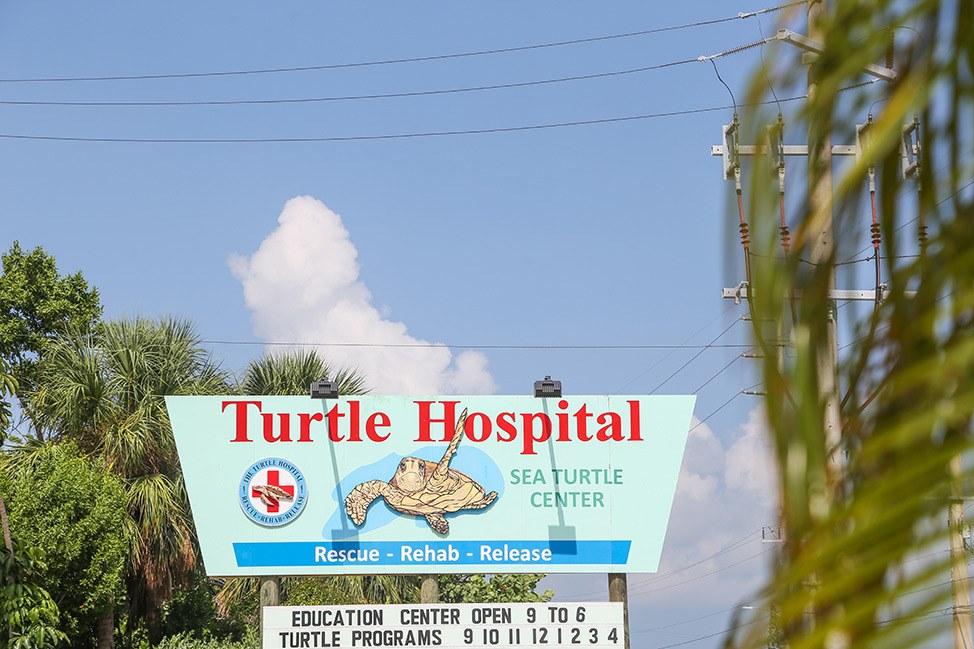 The Turtle Hospital, Marathon, Florida