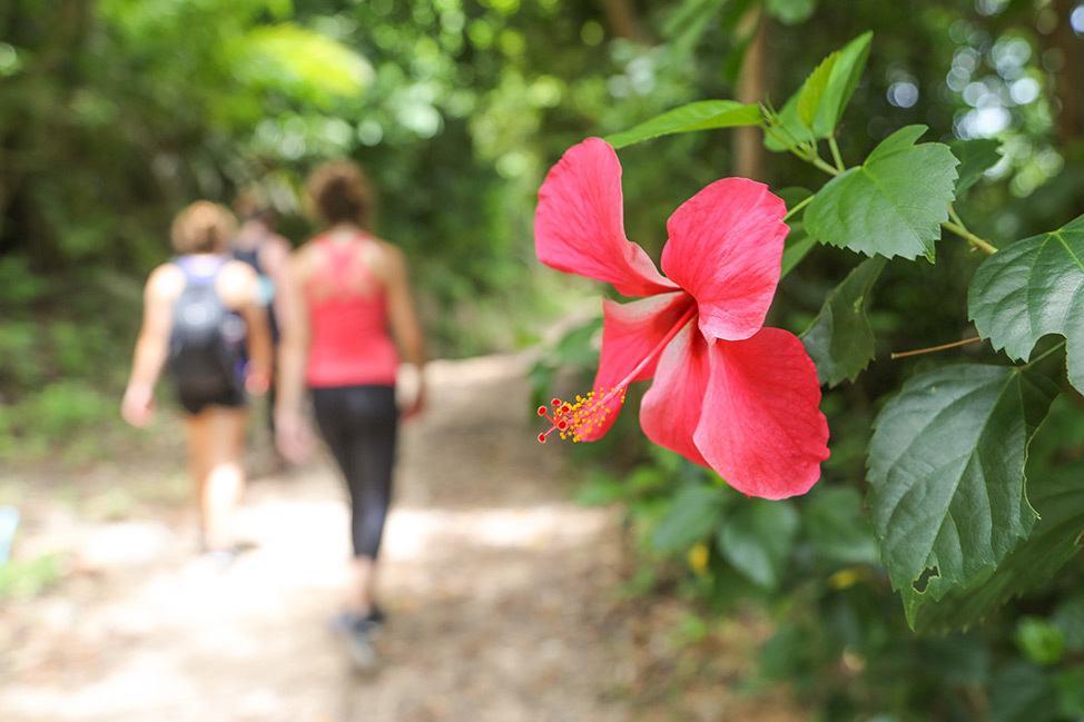 Hiking at Wander Women Dive and Yoga Retreats, Koh Tao, Thailand