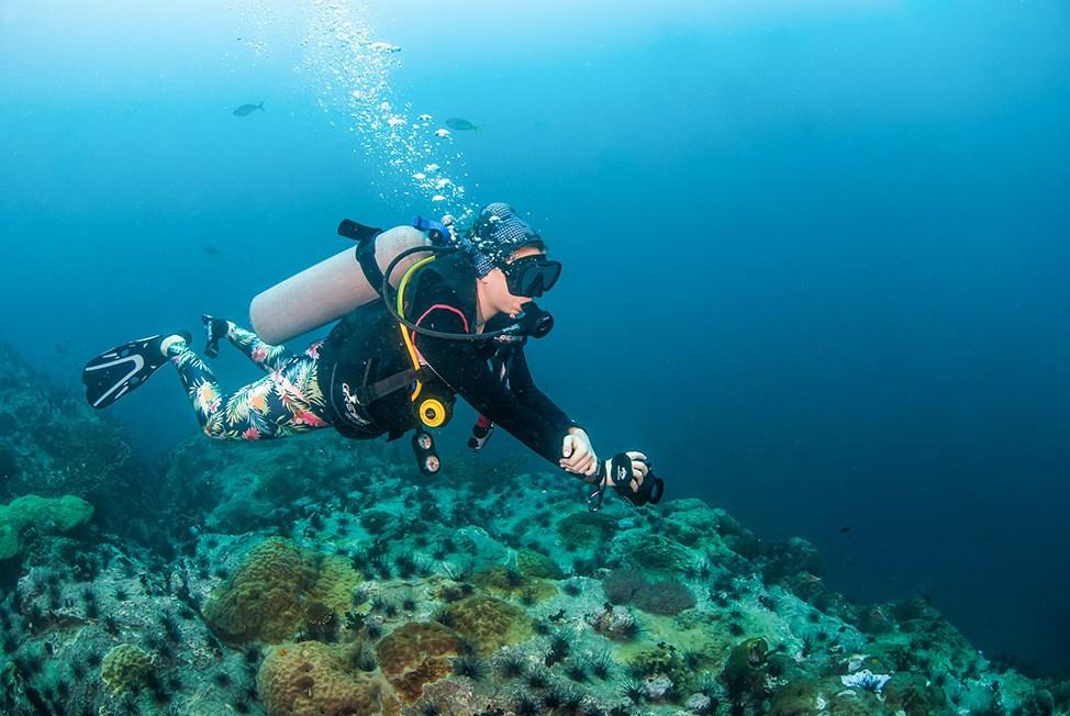 Diving at Chumpon Pinnacle at Wander Women Dive and Yoga Retreats, Koh Tao, Thailand