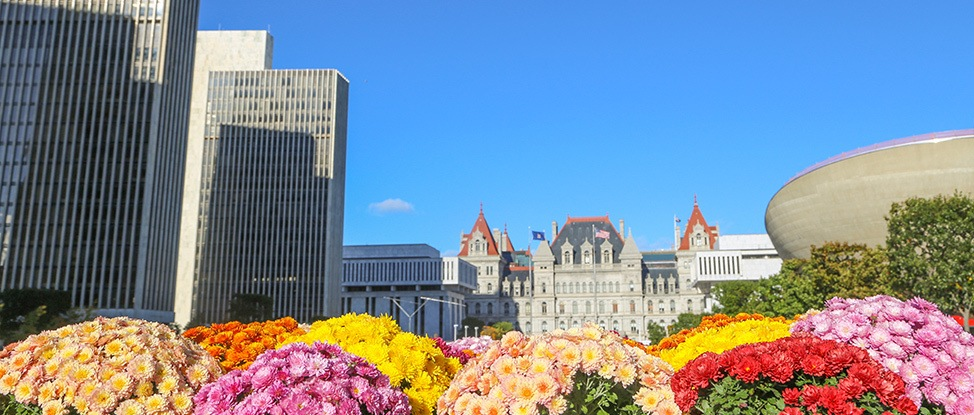 The Wanderland Guide to Albany, New York thumbnail