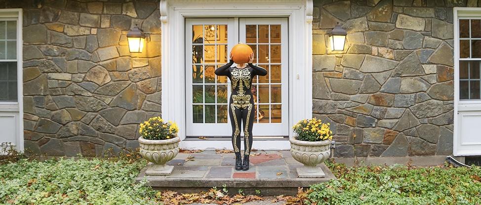 Autumn in Albany: Three Months of Stillness thumbnail