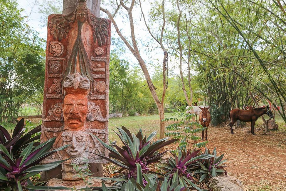 Visiting Hacienda Sotuta de Peon, Merida, Mexico