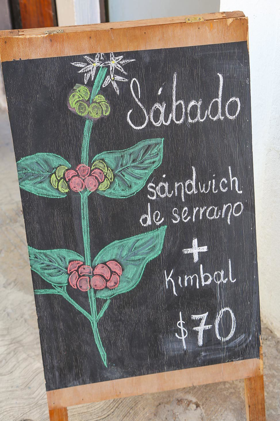 Where to Eat in Merida