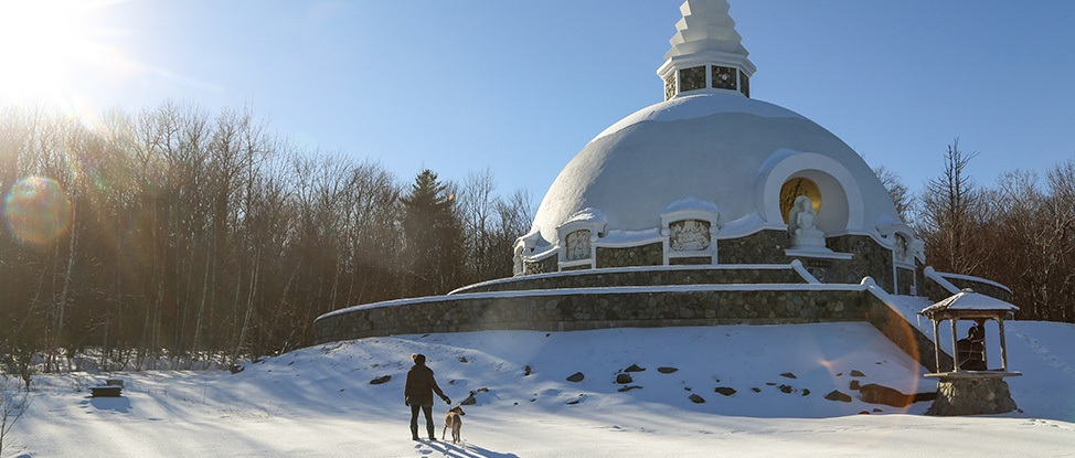 Winter in Albany: A Non-Skiiers Survival Guide thumbnail