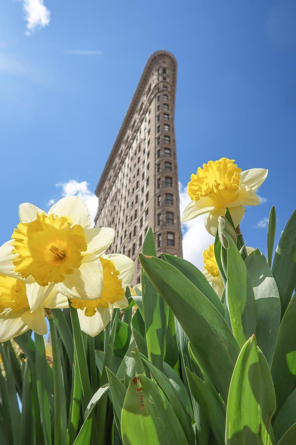 April in New York