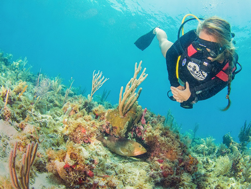 Wander Women Dive and Conservation Retreat in Key Largo, FL