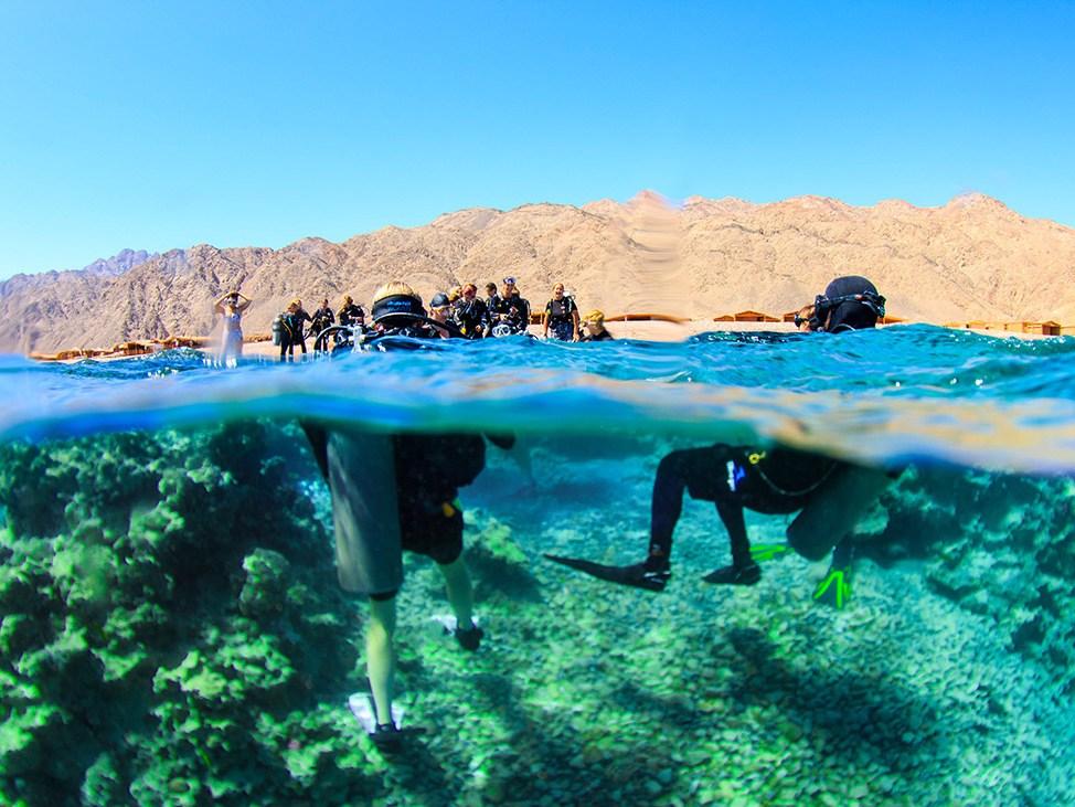 Wander Women Retreat in Red Sea, Egypt