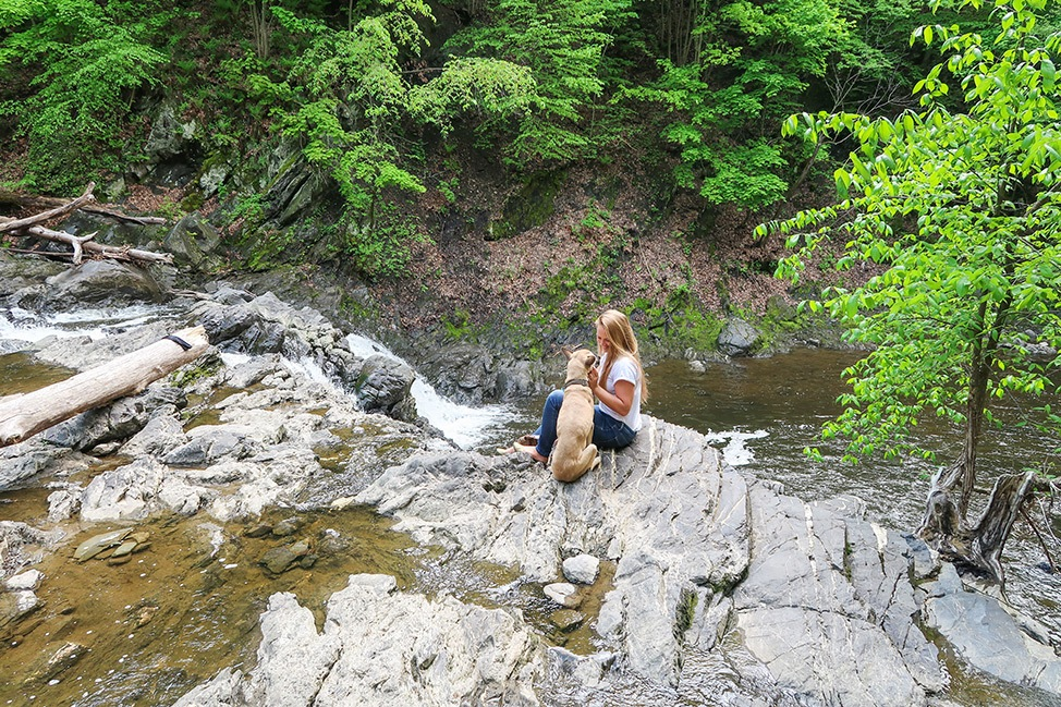 Hiking in Troy, New York with a dog