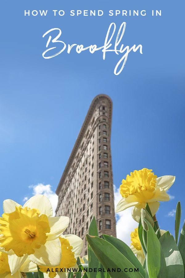 Brooklyn in Bloom: Spring in New York City
