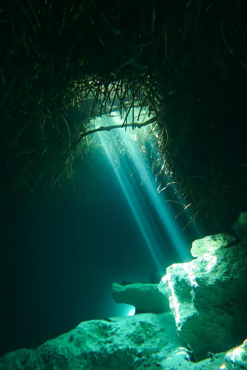 Tips for scuba diving in the cenotes in Tulum, Mexico