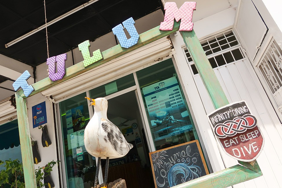 Infinity Diving, Tulum