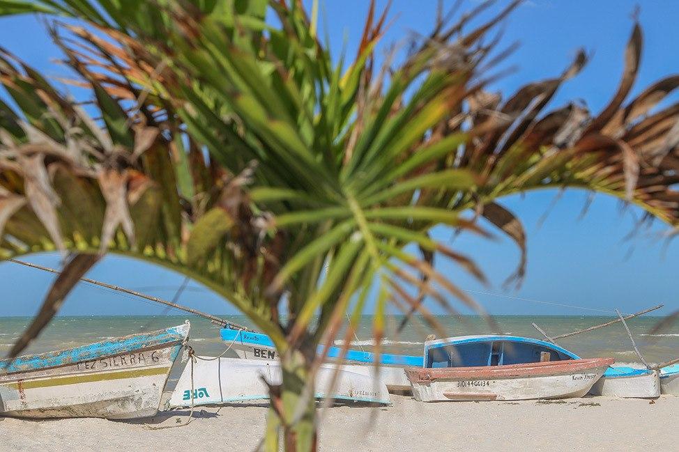 Boats in Progreso Mexico