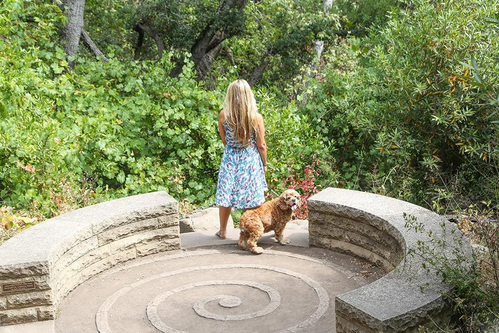 Santa Barbara with a dog
