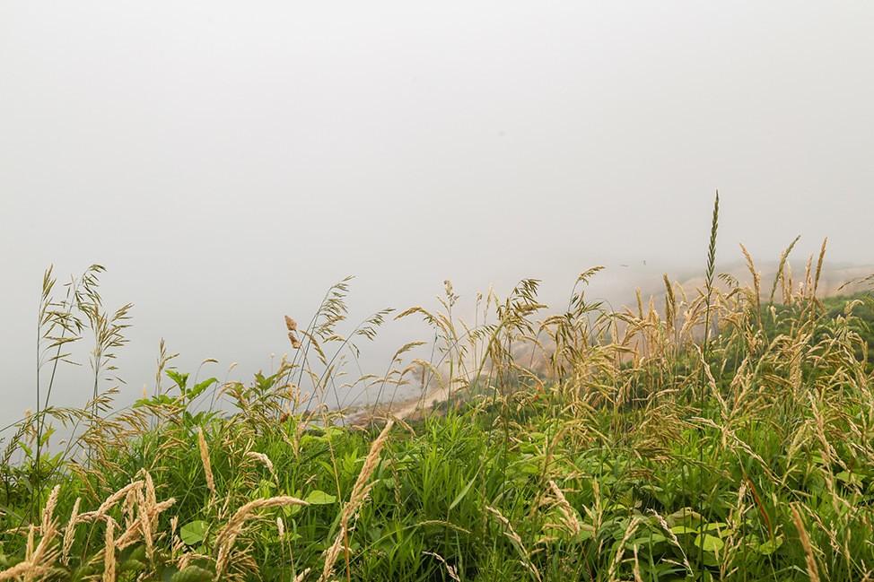 Aquinnah Lighthouse fogged over
