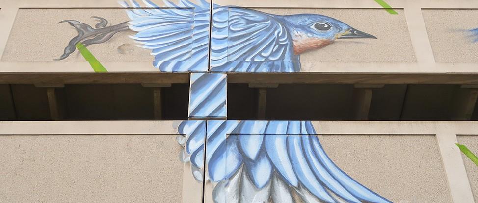 #CapitalWalls: A Mural Tour of Albany's Art thumbnail