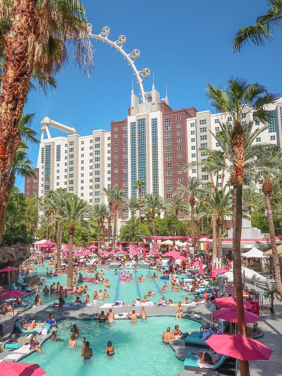 The Flamingo Pool