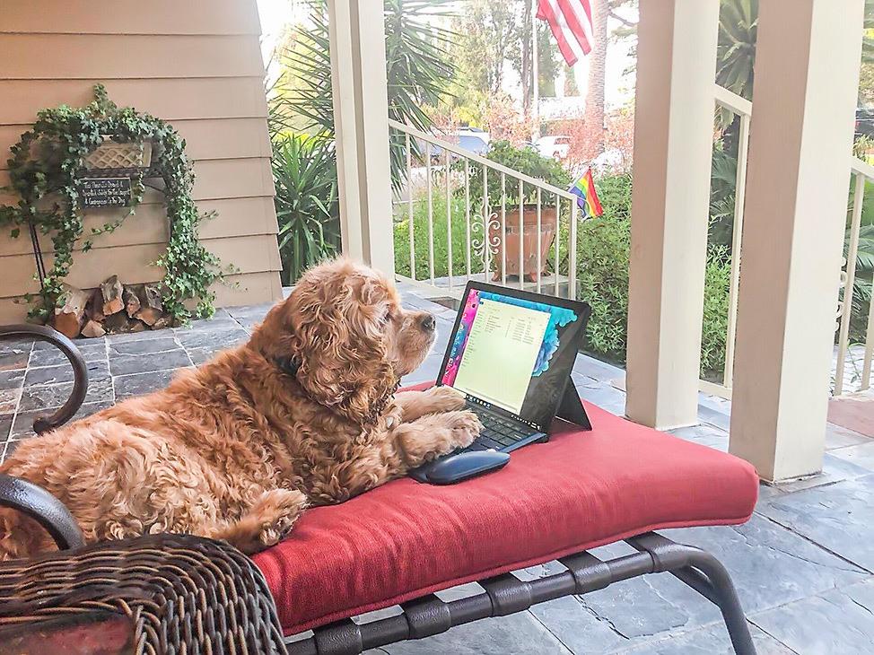 Tucker Working