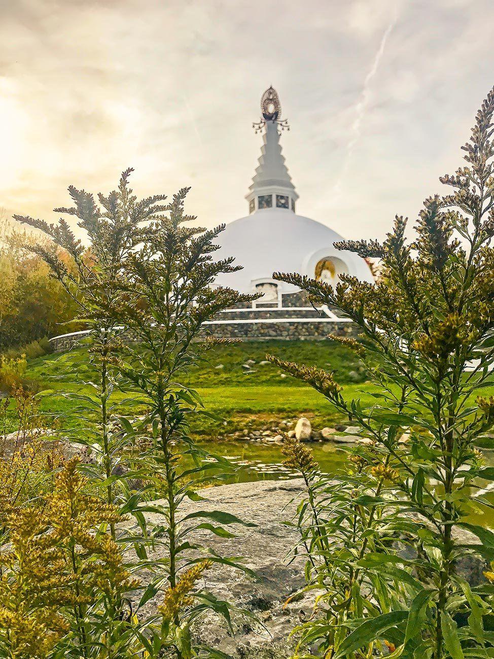 Grafton Peace Pagoda