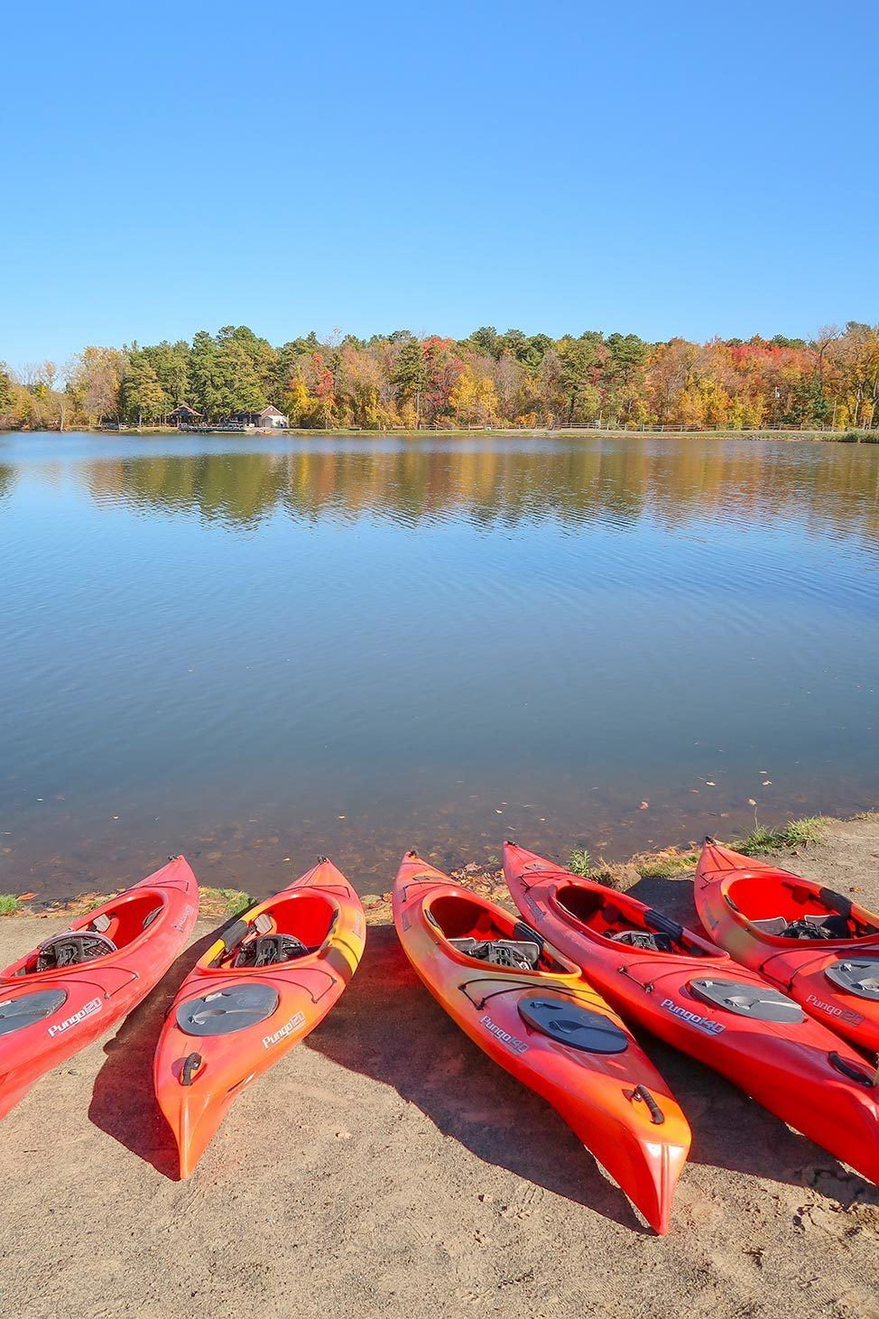 Kayaking with LL Bean School at Six Mile Waterworks Park in the Albany Pine Bush Preserve