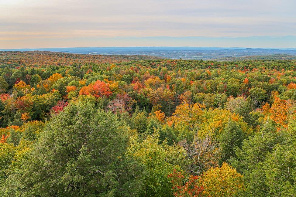 Grafton State Park Fall Foliage
