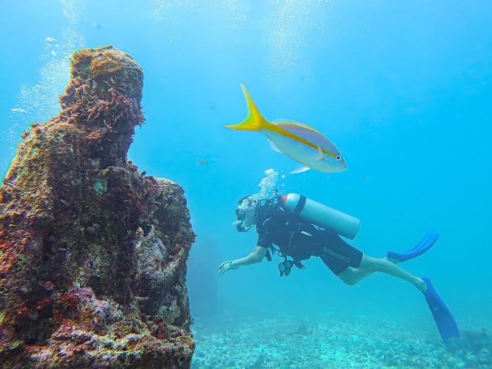 Scuba Diving MUSA's Manchones gallery in Isla Mujeres, Mexico