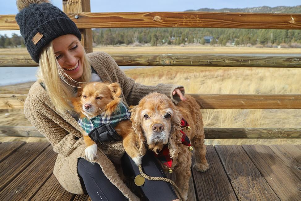 Pups on the Stanfield Marsh Boardwalk, Big Bear, California