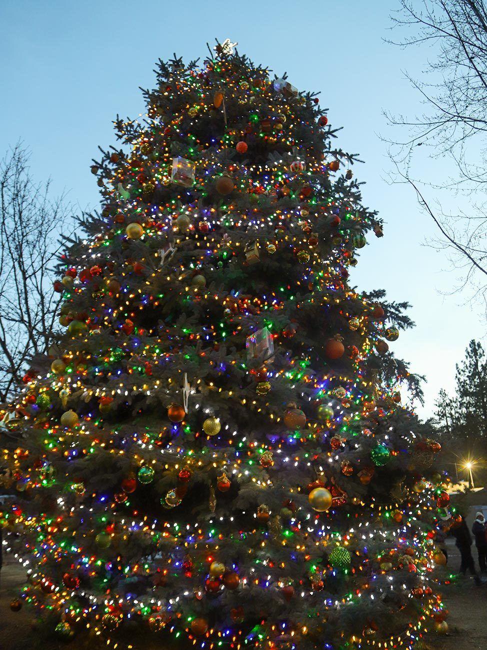Christmas Tree in Big Bear Village, California