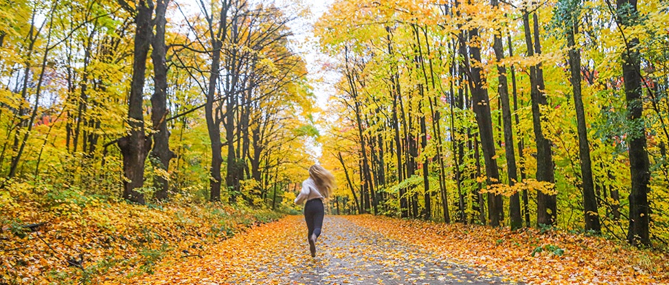 The Magic of The Finger Lakes in The Fall thumbnail