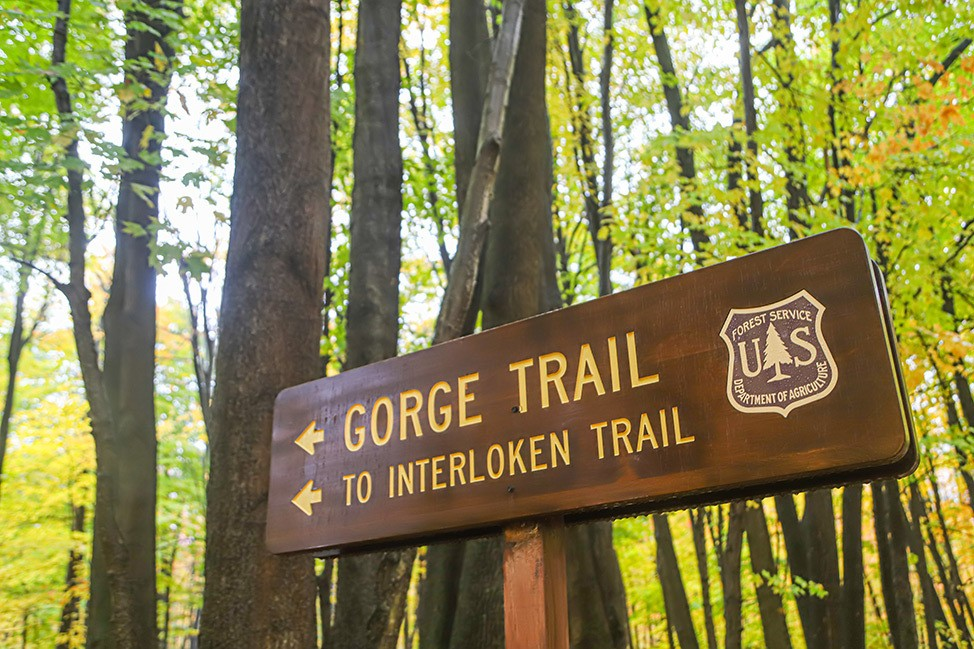 Hiking in Finger Lakes National Forest Southslope Trail