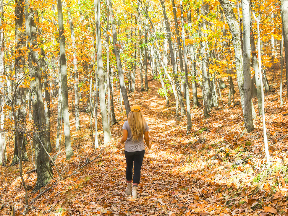 Hiking the Tanglewood Nature Center in Elmira New York