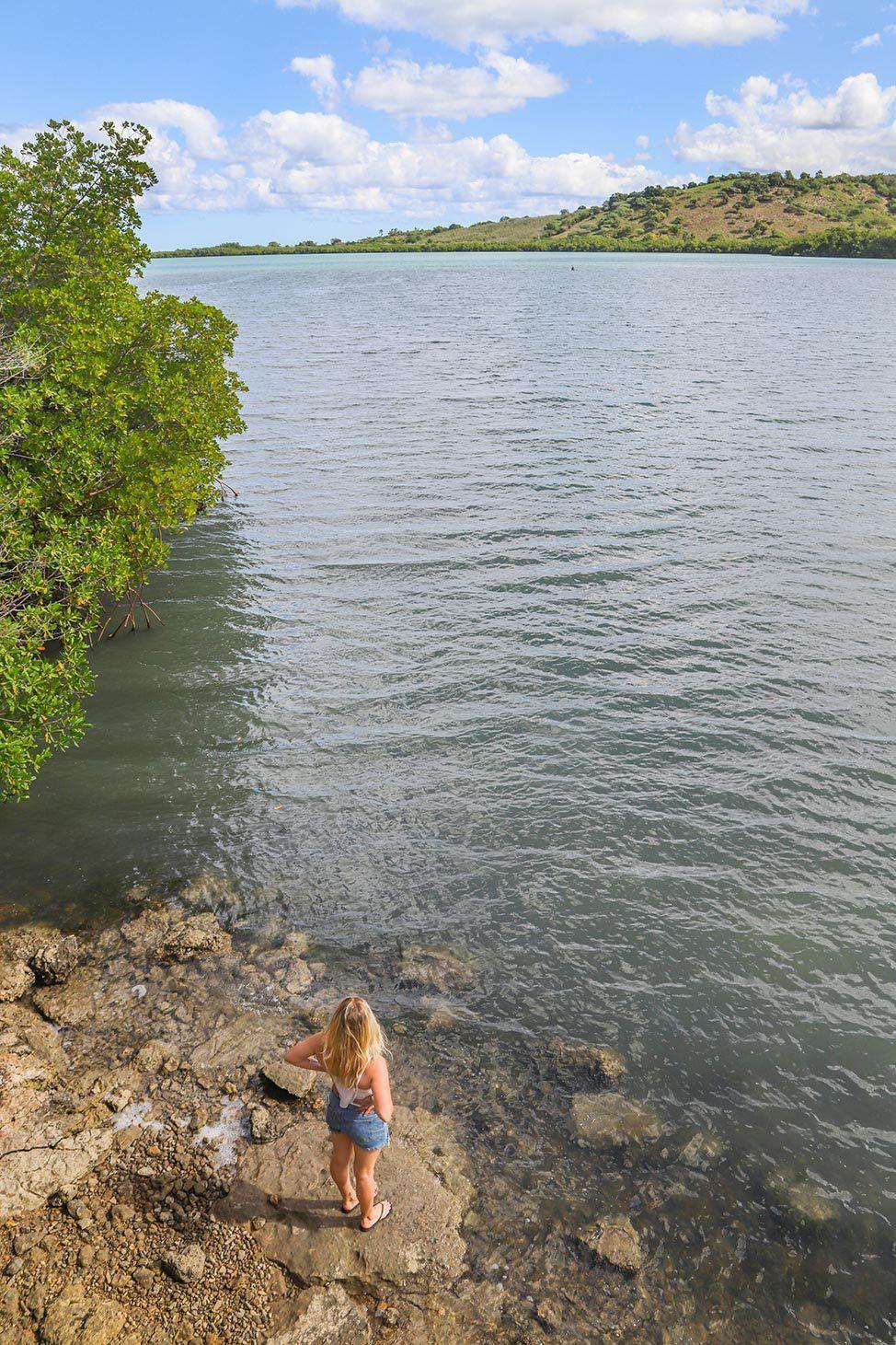 Santuario de Mamíferos Marinos de Estero Hondo, Dominican Republic