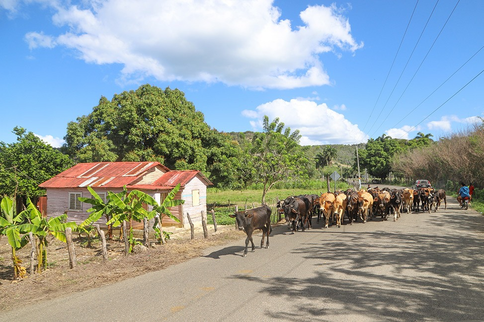 North Coast Dominican Republic Road Trip