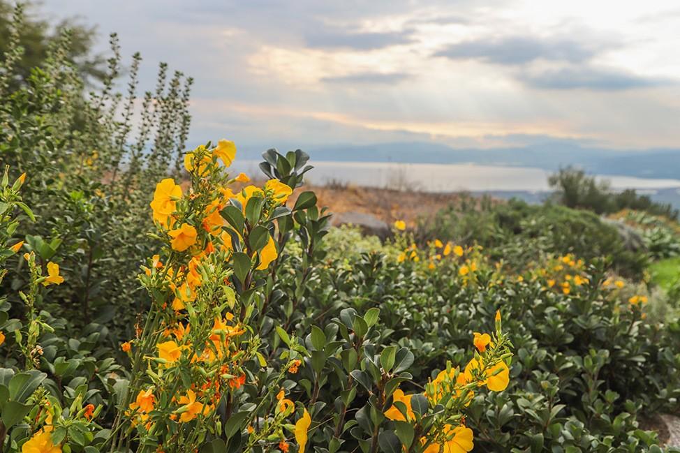 Sunset over Lake Galilee
