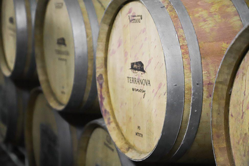 Terra Nova Winery, Galilee, Israel